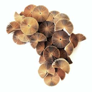 africa-reinvented-keri-muller-simpleintrigue-quick-preset_1415x1413
